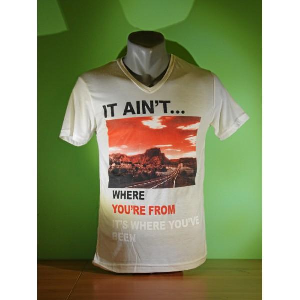 Мъжка тениска 005